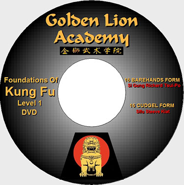 Kung Fu Foundation Techniques Exercises on DVD