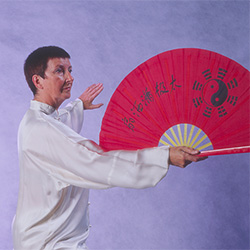 Tai Chi weapons Fan