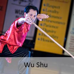 wu-shu