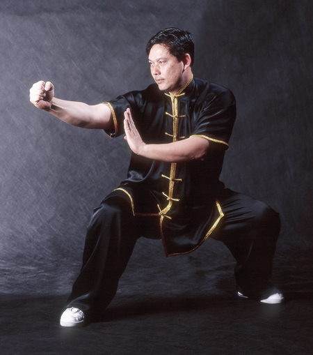 kung fu horse stance with square punch