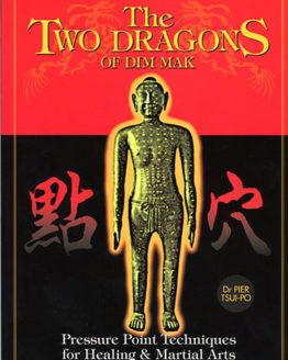 two dragons of dim mak pressure points book