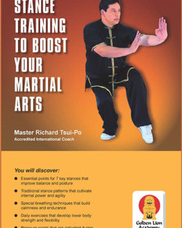 Stance Training to Boost Your Martial Arts