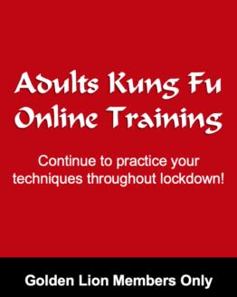 OnlineTrainingKF