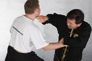dim mak pressure points self defence martial arts