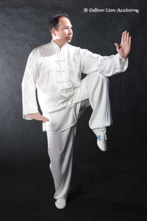 Learning Tai Chi Online, the Crane Stance