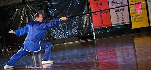 Tai Chi Forms and Routines Si Gung Charles Tsui-Po Spear