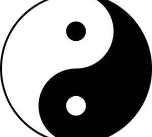 dim mak yin yang striking