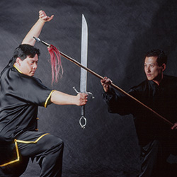 kung fu weapons sword and spear fighting